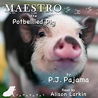Maestro, the Potbellied Pig audiobook cover art