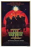 Teenage Mutant Ninja Turtles 3 Movie Poster (27 x 40 Inches - 69cm x 102cm) (1993) -(Elias Koteas)(Paige Turco)(Stuart Wilson)(Sab Shimono)(Vivian Wu)