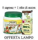 BIOKI Sapone Molle potassico ed Olio di neem spremuto a Freddo Contro Insetti molesti e Ragni del Giardino