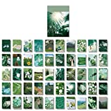 100 Pcs Stickers Set Notebook Style, DIY Journal Stickers for Planner,Beautiful Scenery Green Leaves Texture Decoration,School Supplies 50 Designs Each 2pcs(Green Leaf (FuKezhouri))