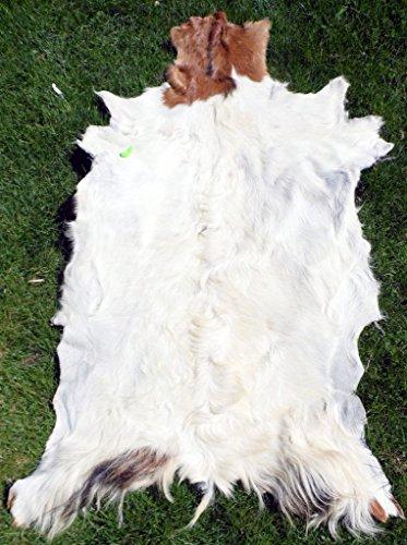 Ziegenfell, Goatskin Leather, Ziegenleder, Läufer, Kamin Deko, Wandschmuck