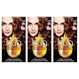 Garnier Olia Ammonia Free Permanent Hair Color, 100 Percent Gray Coverage (Packaging May Vary), 6.43 Light Natural Auburn, Red Hair Dye, Pack of 3