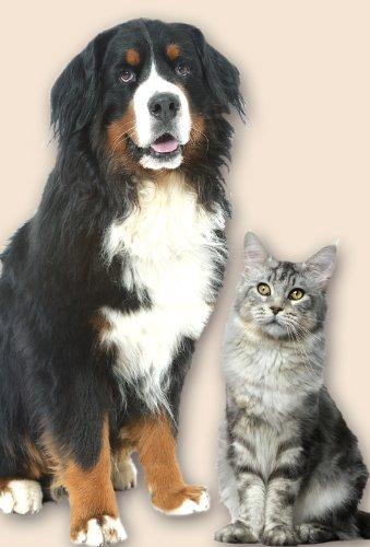 Wenko – Tierpflege-Bürste selbstreinigend - 4