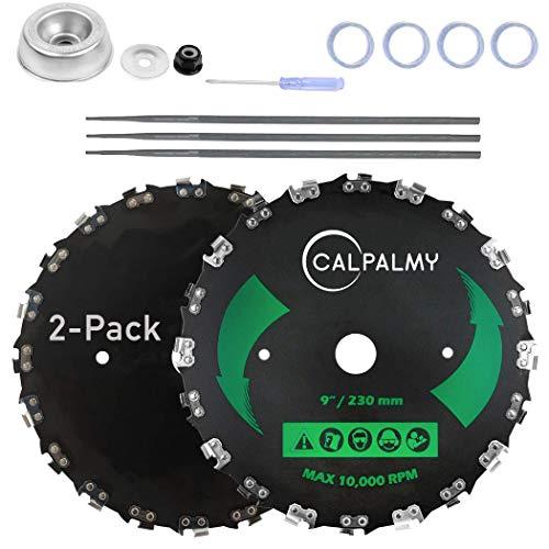 CALPALMY (2-Set) 9