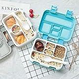 Milopon Bento Box, Lunchbox Kinder, Brotdose Kinder 4 Unterteilungen (Fächer), Spülmaschinengeeignet, Mikrowellengeeignet, BPA Schadstofffrei, Geruchs- und Geschmacksneutral