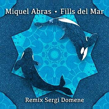 Fills de Mar (feat. Sergi Domene, Sergi Vila) [Remix Sergi Domene & Sergi Vila]