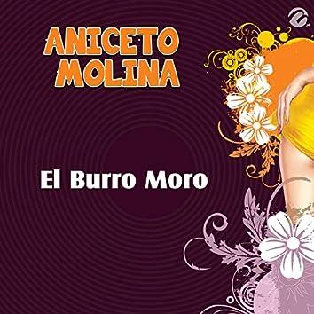 El Burro Moro - Single
