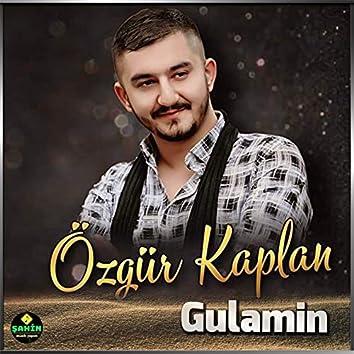 Gulamin