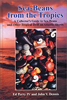 sea beans from the tropics