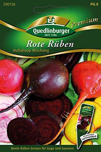 Rote Rüben Hullahoop Mischung von Quedlinburger Saatgut
