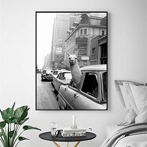 Rahmenlose ölgemälde Lama In Einem Taxi Auf Times Square Leinwanddrucke Moderne Ng Poster Wandkunst Bilder Für Wohnzimmer Deco60x90cm