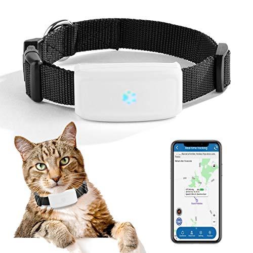 Zeerkeers Localizador GPS en Tiempo Real Pequeño Pet GPS Tracker TK911 para Perros Gato Localizador de Dispositivos con Historial de Ruta, Dispositivo de Alarma de Pista Impermeable APP Gratuita