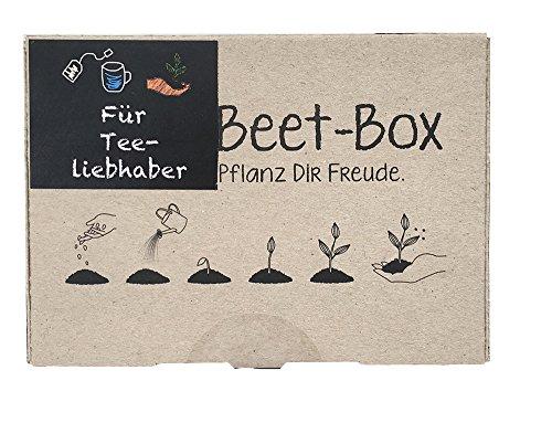 Samen Maier BB04 Beet-Box \'Für Tee-Liebhaber\' (Bio-Anzuchtset)