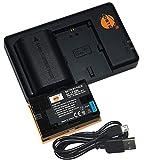 LP-E6N LP-E6NH LP E6N Batería DSTE(2-Pack) 2600mAh Cámara Baterías y Cargador USB de Doble Ranura Compatible para Canon EOS R,EOS R5,EOS R6,XC10,XC15 Cámaras etc