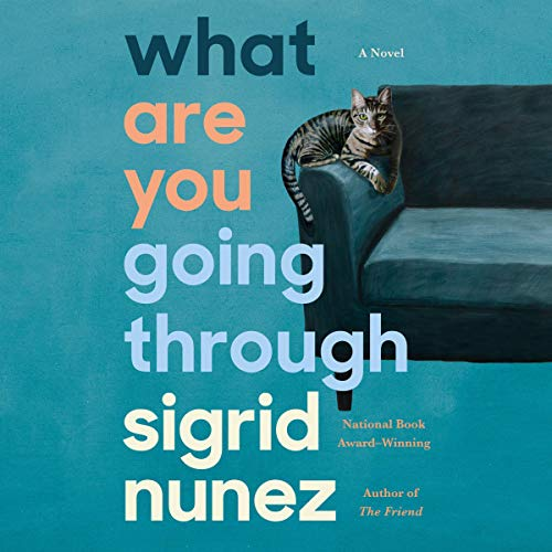 Couverture de What Are You Going Through