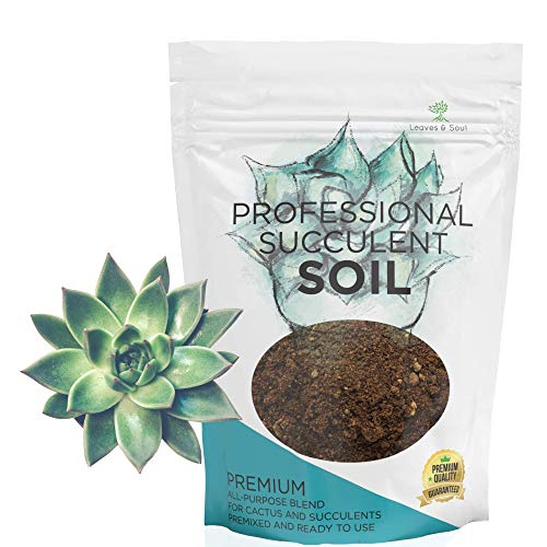 Succulent Soil Premium All Purpose Blend | Pre-Mixed Ready to Use for Cactus and Succulents | Canadian Peat, Course Sand, Pinebark | Extra Large 2.2 Quarts | Made in USA