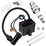 QAZAKY CDI Ignition Coil Spark Plug for 49cc 50cc 60cc 66cc 70cc 80cc 2-stroke Engine Motorized Bicycle Bike
