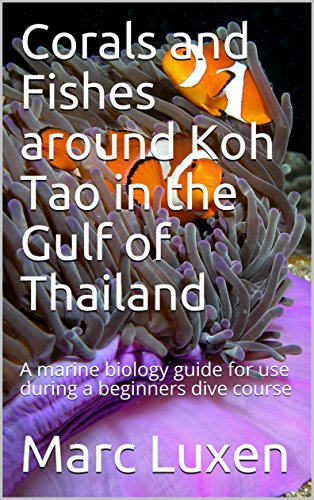 Corals and Fishes around Koh Tao in the Gulf of Thailand: A marine biology guide for use during a dive course for beginners (Recreational Scuba Dive Education Series Book 3) (English Edition)