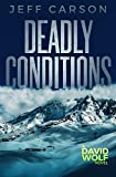 Deadly Conditions (David Wolf Mystery Thriller Series)
