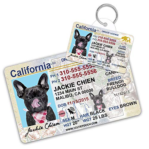California Driver License Custom Dog Tag for Pets and Wallet Card - Personalized Pet ID Tags - Dog Tags for Dogs - Dog ID Tag - Personalized Dog ID Tags - Cat ID Tags - Pet ID Tags for Cats