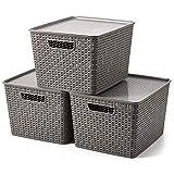 EZOWare 3 pcs Grande Cestas de Almacenaje Multiuso Apilable con Tapa, Cajas Organizadoras de Plástico con Efecto de Mimbre y Asas para Cocina, Baño - Gris