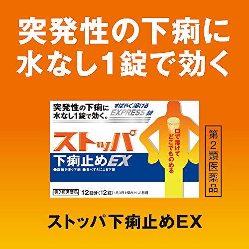 【第2類医薬品】ストッパ下痢止めEX24錠