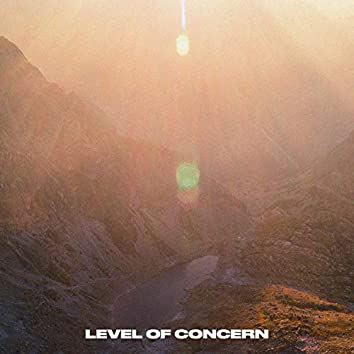 Level of Concern (Cover)