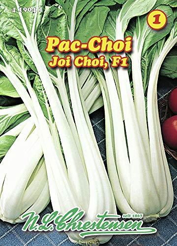 N.L. Chrestensen 419041 Pac Choi Joi Choi F1 (Pac Choi Samen)