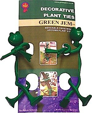 Cravates de plantes grenouille
