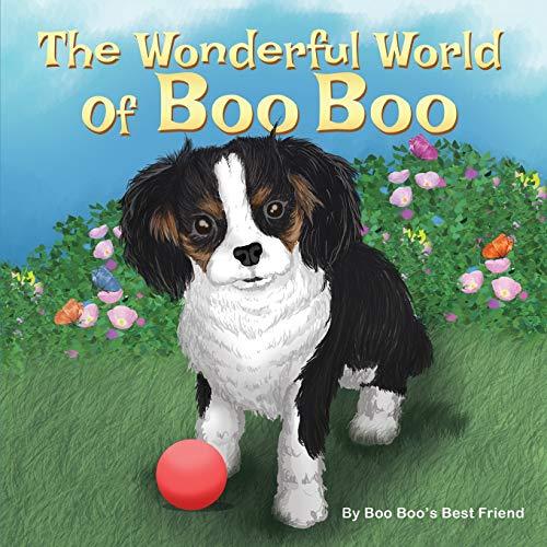 The Wonderful World Of Boo Boo