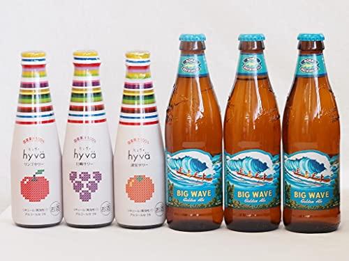 クラフトビールとリキュール6本セット(ヒュヴァ リンゴサワーalc.5% ヒュヴァ 巨峰サワーalc.5% ヒュヴァ 清見サワーalc.5% ビッグウェーブ・ゴールデンエール) 200ml×3本 355ml×3本