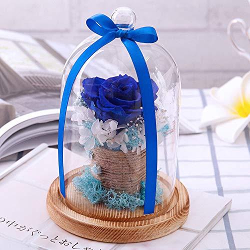 serliy Endlose konservierte Rosen-Blume im Glas-Romantisches Geschenk-Valentinstag-Geburtstag (Blau)