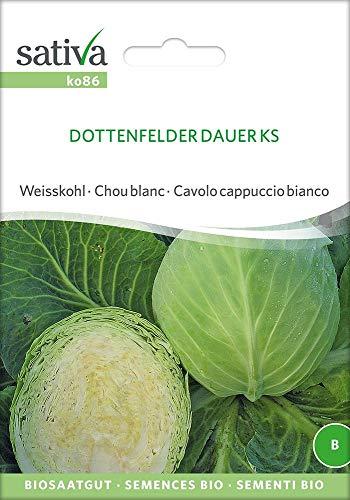 Sativa Rheinau ko86 Weisskohl Dottenfelder Dauer Ks (Bio-Weißkohlsamen)