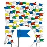 GOODS+GADGETS 100 Stück Markierungs-Fahnen im XXL Pack; Markier-Fahnen-Pins in 5 Farben für Pinnwand, Landkarten & Weltkarten