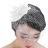 Vivivalue White Fascinator Hat Felt Veil Net Mesh Feather Hair Accessory Clip Pin