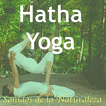 Música para Posiciones de Hatha Yoga: Sonidos de la Naturaleza para Calmar la Mente y el Alma y Hacer Meditaciòn Zen