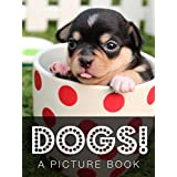 Dogs! A Picture Book (Animal Photo Books 2) (English Edition)