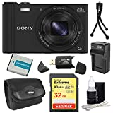 Best Point And Shoots - Sony Cyber-Shot DSC-WX350 Digital Camera Black Bundle Review