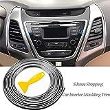 Silence Shopping 5M 3D bricolage automobile moteur de voiture intérieur décoration extérieure moulage Trim ligne de bande Autocollant (Silver)