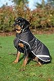 Hunde Winter-Regen Mantel
