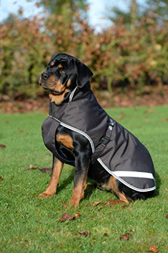 Bucas Freedom Hundedecke 50g, Bucas:Coffee, Größen:35 cm