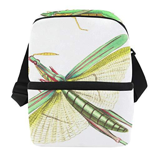 Stilvolle Insulated Lunch Shoulder Bag Brotdose für Frauen Grasshopper
