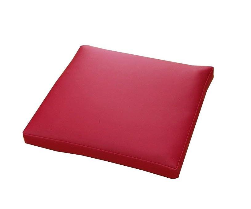 辛いご注意泥沼PVC ソフトレザー リビングクッション「 グレイス 」【IT】約50×50×5cm レッド(#9810195)