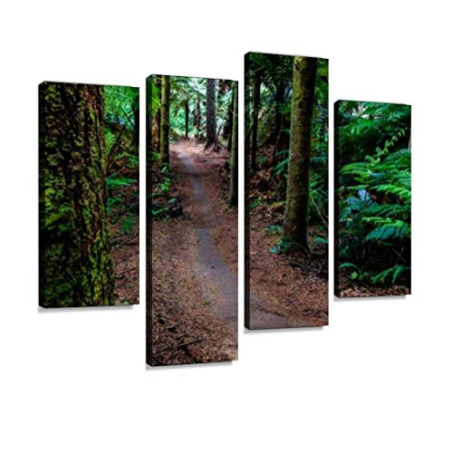 HIPOLOTUS 4 Panel Canvas Pictures Mountain Bike Single Track Rural Life Bike Stock Pictures, Royalty Wall Art Prints Paintings Stretched & Framed Poster Home Living Room Decoration Ready to Hang