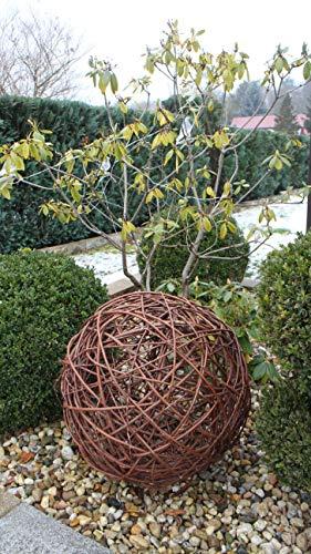 Weidenkugel in 6 Größen, Dekokuge laus Weide Weidenball Gartenkugel Handgefertigt in EU (50cm)