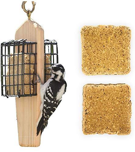 Naturesroom Suet Feeder for Birds - Include 2 Bonus Suet Cake Cage Feeder Packs -Premium Insect and Peanut Suet Cakes for Feeder Basket Holder