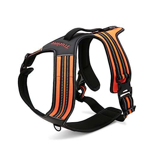 TOPSOSO Fashion Shop Front Range No-Pull Dog Harness 3M Reflective Outdoor Adventure Pet Vest with Handle.New 2015 Truelove Model Offered in 3 Stylish Colors