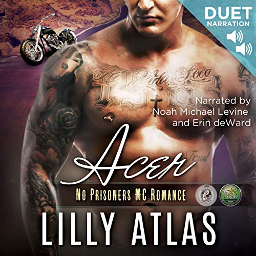 Acer audiobook cover art
