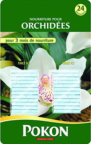 Pokon Engrais Batonnets Orchidees x24