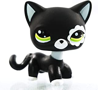 Meetsunshine LPS Toy,Rare Black Cat Green Eyes Flower Patch Kids LPS Toy Littlest Pet